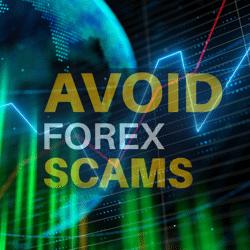 Avoid Forex EA Scams