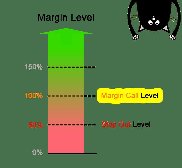 Margin level