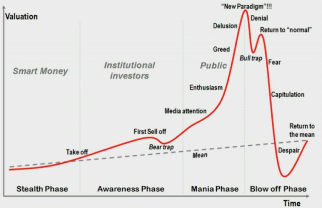 Economic bubbles: How they develop and eventually burst