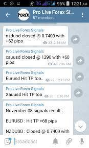 A telegram group that debates on forex and provides signals. Usually, these communities have 10-20 thousand members, making it impossible to ask any genuine questions.