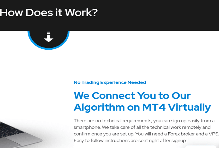 ELITE Automated Algorithm EA. How does it work