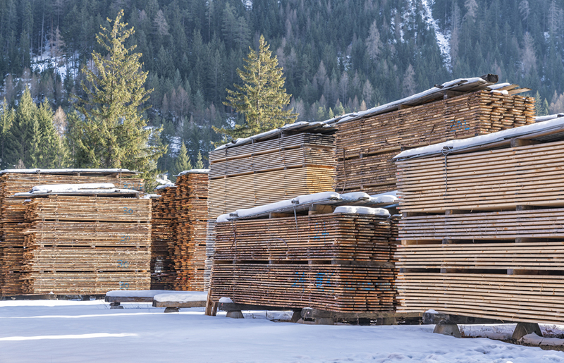 Lumber Futures Hit Limit Down As Decline Continues